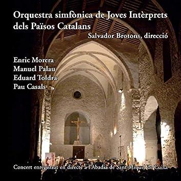 Orquestra Simfònica de Joves Intèrprets dels Països Catalans (OJIPC) 2006