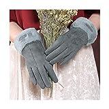 KEHUITONG Handschuhe Damen, Winter Warm Plus Samthandschuhe, Touchscreen-Reithandschuhe (Color : Blue) -