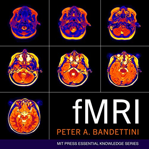 fMRI audiobook cover art