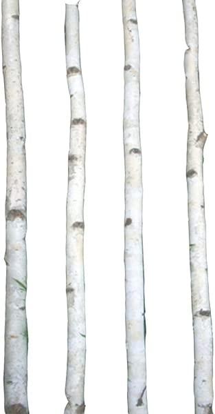 Four Thin White Birch Poles 7 Ft