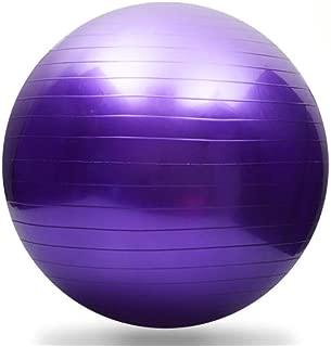AINAAN Premium Extra Thick Yoga Ball, Anti-Burst-Slip Resistant55cm Size Fitness, 2019, Purple