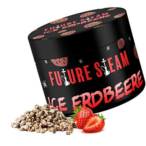 Futuresteam Dampfsteine in verschiedenen Geschmacksrichtigungen 150g, Shisha Steine mit langanhaltendem Geschmack, Wasserpeifen Geschmacksteine (Ice Erdbeere)