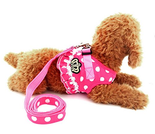 Ranphy Polka Dot Small Dog Cat Harness Girl No Pull Pet Weste Step-In Mesh Jacket With Leash Set Adjustable For Walking Training Hiking Pink Size XL
