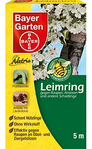 Bayer Leimring 5 m