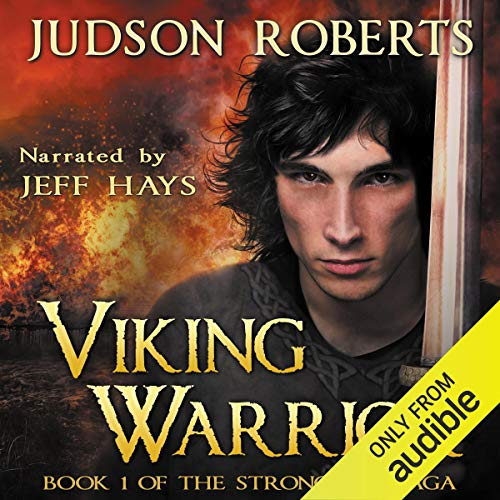 Viking Warrior audiobook cover art