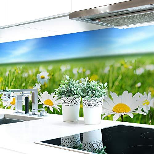 Küchenrückwand Blumenwiese Premium Hart-PVC 0,4 mm selbstklebend 220x60cm