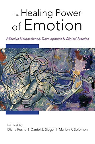 The Healing Power of Emotion: Affective Neuroscience, Development & Clinical Practice: Affective Neuroscience, Development and Clinical Practice ... Neurobiology (Hardcover), Band 0)