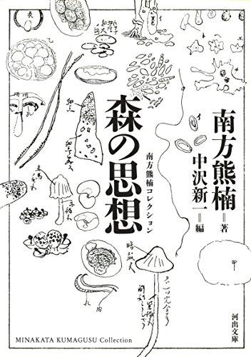 森の思想 (河出文庫) - 南方 熊楠, 新一, 中沢