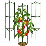3Pack Tomato Cages,Up to 51inch Plant Stakes Vegetable Trellis Assembled for Garden Climbing Plants Vegetables Flowers