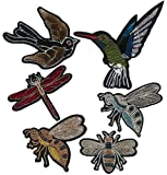 6 Birds Embroidered Patches Ironing - REF.727-U6