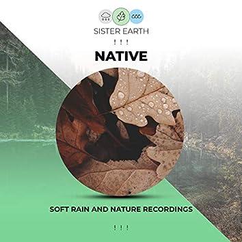! ! ! Soft Native Rain and Nature Recordings ! ! !