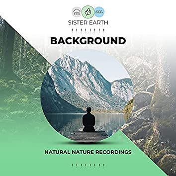 ! ! ! ! ! ! ! ! Background Natural Nature Recordings ! ! ! ! ! ! ! !