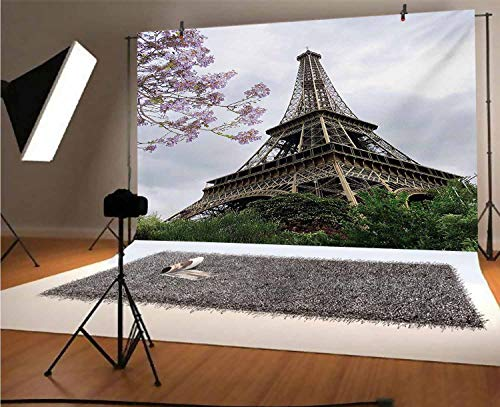 Eiffel Tower 8x6 FT Vinyl Photography Background Backdrops,Eiffel Natural Flowers Colorful Blossoms Cloudy Sky Perspective Paris Print Background for Photo Backdrop Studio Props Photo Backdrop Wall