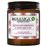 Air Wick Botanica Bougie Parfumée Cire d'Origine Naturelle Géranium & Rose 205g