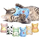 Potaroma 6 Pack Soft Plush Cat Chew Toys Catnip Toys, Cute Cartoon Animal Toys, Bite Resistant Cat Nip Toys for Indoor Cats, Catnip Filled Cat Kicker Toy for Kitty Kitten, Great for Cat Teething