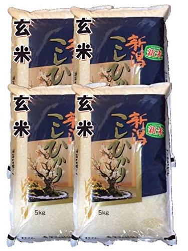 新潟県産 玄米 石抜き処理済 コシヒカリ 20kg(5kg×4袋) 令和2年産