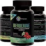Premium Berberine HCl Plus Ceylon Cinnamon Complex 1200mg for Blood Glucose, Pressure & Sugar, Support Immune System, Diabetes, Cholesterol & Insulin, Fat Metabolism Booster – Supplement 120 Capsules