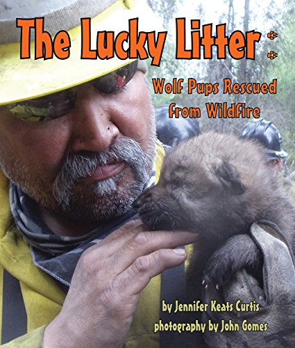 Lucky Litter, The: Wolf Pups Rescued from Wildfire (Arbordale Collection)