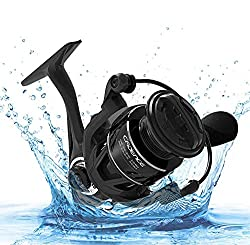 Best saltwater spinning reels with Cadence CS5