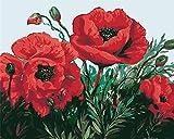 Pintura al óleo por números kit DIY acrílicas Pintura para Adultos y niños Pintura de Lona con Pinturas acrílicas Decoracione regalo-Flores rojas 40 x 50 cm sin marco