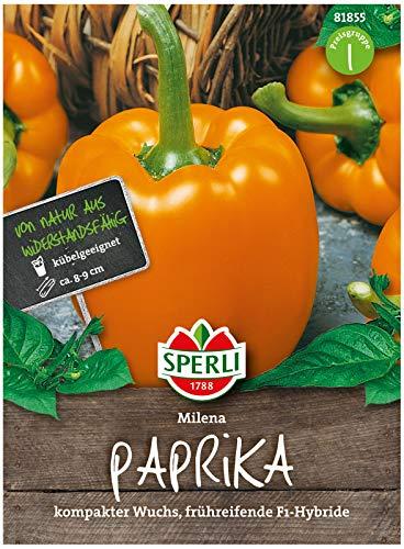 Sperli Premium Paprika Samen Milena ; Frühreifend, Ertragreich, große Früchte ; Paprika Saatgut