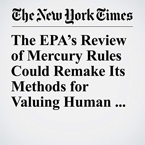 The EPA's Review of Mercury Rules Could Remake Its Methods for Valuing Human Life and Health copertina