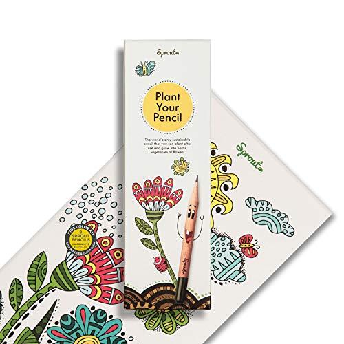 Sprout Bleistifte – Malset für Kinder | 6 Bunt- und 2 Graphitstifte zum Einpflanzen | aus unbehandeltem Bio Naturholz und mit bleifreien Minen | Inklusive Malbuch | 8er Pack