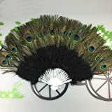 FeiliandaJJ Faltfächer Handfächer Damen Vintage Elegant Pfauenfeder Chinesischer Stil Fächer