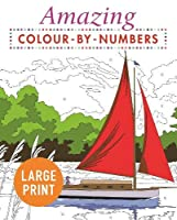 Amazing Colour-by-Numbers Large Print (Arcturus Colour by Numbers Collection)