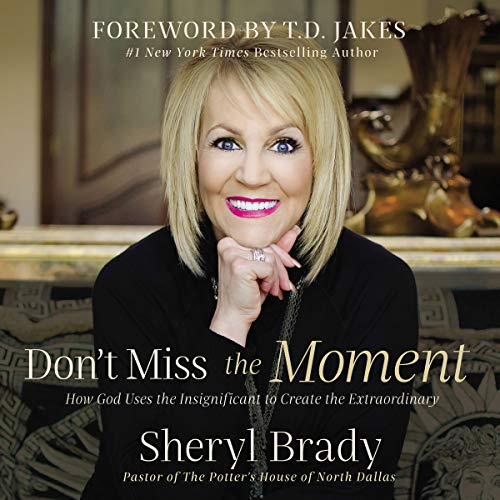 Don't Miss the Moment audiobook cover art