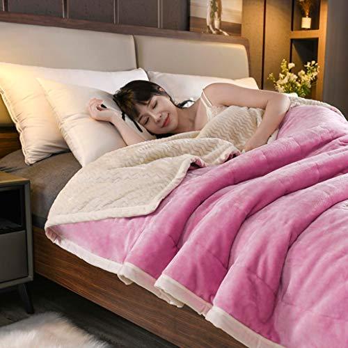 LXDWJ Capas Mantas y lanzamientos Adult Thick Warm Windar Winter Mantas Queen Flannel Mantas en la Cama (Size : 180x200cm 2.3kg)