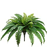 One 25 Inch Long Silk Artificial Boston Fern Bush with a 40 Inch Spread from Tip to Tip When Spread Out from The Middle. 48 Branches