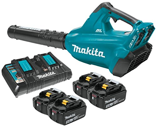 Makita 18V Blower Kit...