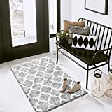 Carvapet Moroccan Trellis Area Rug Soft Velvet Small Accent Distressed Throw Rugs for Bathroom Entryway Microfiber Soft Shag Mat for Kitchen Laundry Room Decor (2' X 3', Gray)