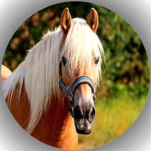 Premium Esspapier Tortenaufleger Tortenbild Geburtstag Pferde T43