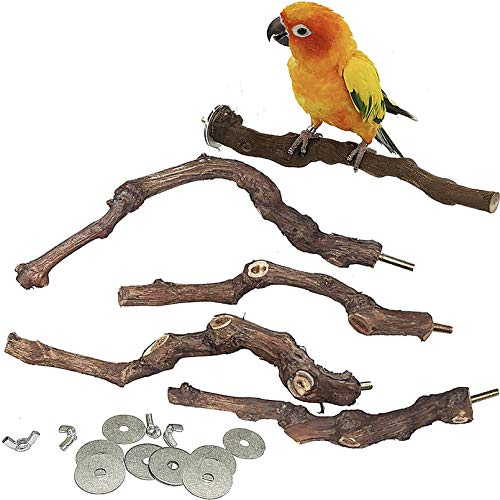 PINVNBY Parrot Perches Cockatiel Stand Wood Perches Natural Grape Stick Grinding Paw Toy Cage Accessory For Small Medium Parrot Budgies Cockatoo 5 PCS