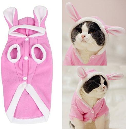 Accesorios para gatos _image3