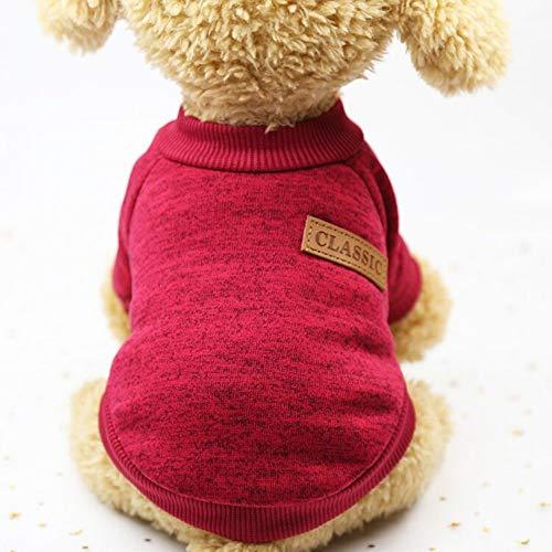 FORMEG Hundekleidung Haustier Haustierkleidung Für Einen Hund Kleidung Für Kleine Hunde Jacke Mantel Hundeausstattung Winter Großer Hund Haustiere Kleidung Chihuahua Kleidung York