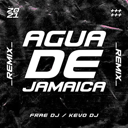 Agua De Jamaica (Remix)