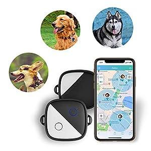 immagine di PETFON Cani Animali Localizzatore GPS Nessuna tassa mensile in tempo reale Monitoraggio Anti-perso Smart Finder(Only for Dog)
