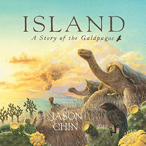 Island: A Story of the Galapagos audiobook cover art
