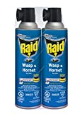 Wasp Sprays Review and Comparison