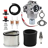 Hayskill 42-853-03-S Carburetor with M92359 Air Filter for Kohler CV15 CV15S CV14 15 HP Engine GY20574 LT155 Carb Replace 12-853-93-S 1285393-S 12-853-93-S
