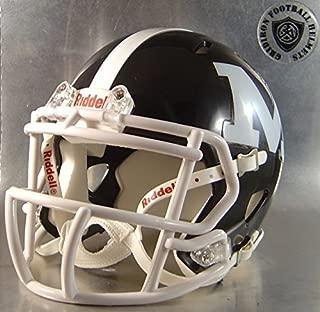 Midlakes Screaming Eagles 2015-2016 - New York High School Football MINI Helmet