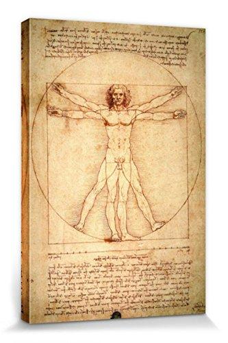 1art1 57235 Leonardo Da Vinci - Vitruvianischer Mensch, Circa 1490 Poster Leinwandbild Auf...