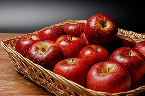 減農薬 シナノスイート りんご 訳あり 約4.5kg 8〜25個入 C品 長野産 リンゴ 林檎 産地直送 小山 SSS 10g