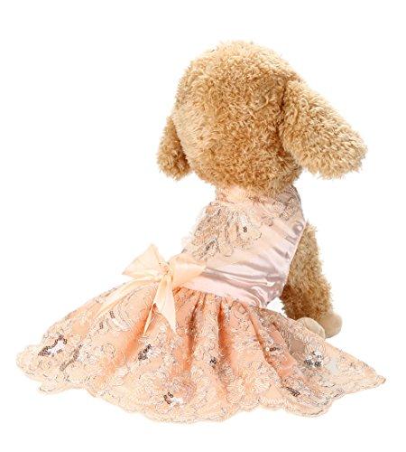 Routinfly Haustier Kleidung Hund Katze Kleidung,Pailletten Spitze Besticktes Hundekleid Prinzessin Brautkleider Für Hund XS-XL