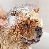 AniForte pflanzliches Neemöl Shampoo 400 ml Hundeshampoo parfümfrei – Naturprodukt für Hunde - 5