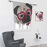 GugeABC Kids Curtains Pug Thermal Insulated Adjustable Balloon Fashionable Dog with Heart Shaped Glasses and Dotted Bow Tie I Love Pugs Drawing 42' Wide by 72' Long Pink Grey White