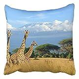 tyui7 Giraffe DREI auf Kilimanjaro-Berg im Nationalpark Kenia Afrika Dekor Kissenbezüge Polyester...